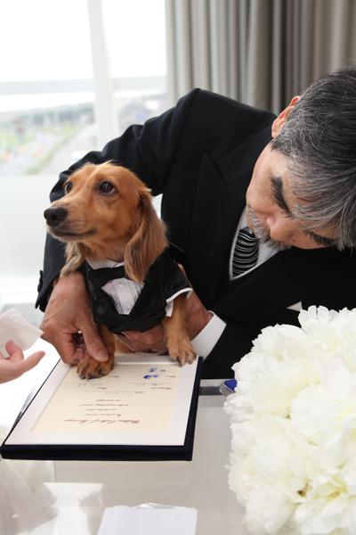 結婚証明書に肉球で立会人(犬)サイン(犬の足跡マーク)