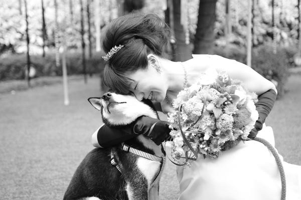 プレゼンターの愛犬は各所(乾杯の挨拶、余興、結婚証明書烙印)で大活躍