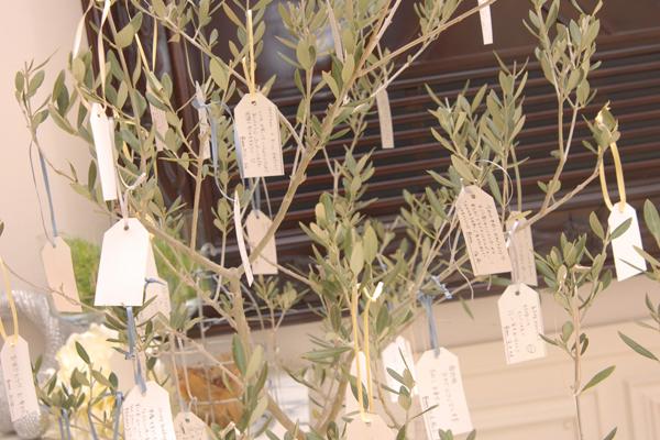 オリーブの木にメッセージをつる下げて頂きました