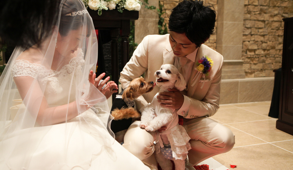 ワン婚Wedding ~最愛のワンちゃんと共に~のレポート写真
