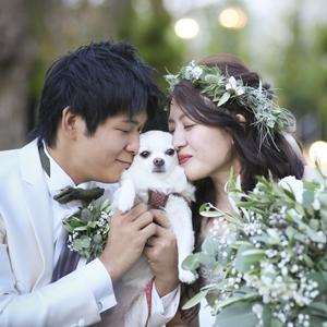 大切なペットと過ごす結婚式~ワン婚~