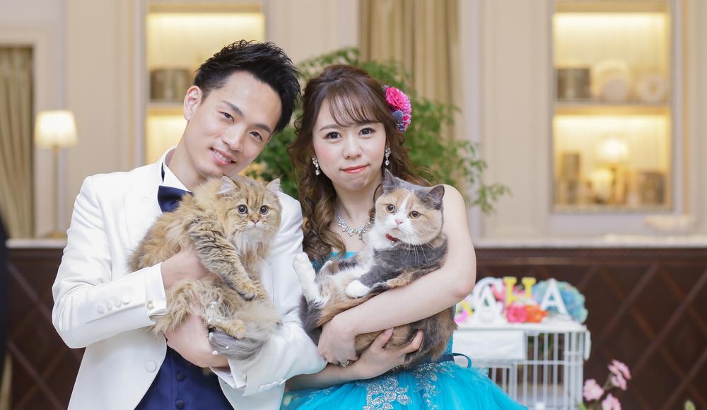 ワイワイ楽しみ想いを届けて、<br /> 家族の猫ちゃんも一緒に過ごそうのレポート写真