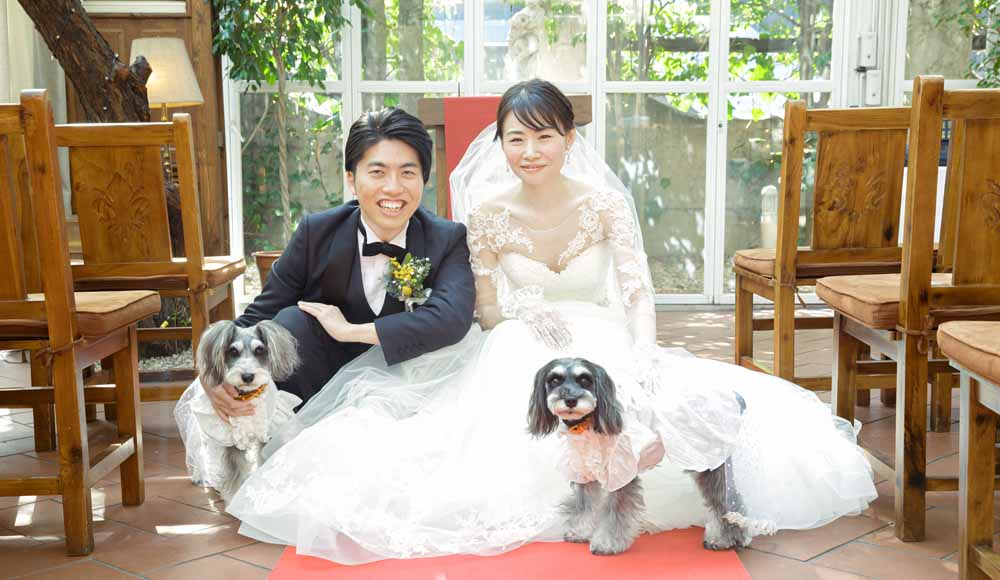 with PET WEDDING