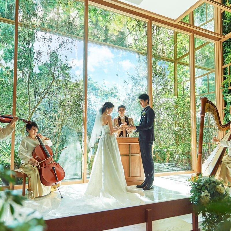 HP限定【ウィンタープラン】2020年1月~3月までの結婚式